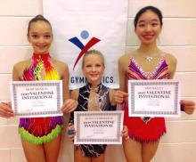 2017 MI Invitational, Level 9 : Bella, Lisa and Carolyn with Special Awards!!
